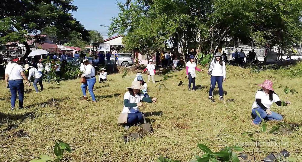 Tree planting in Nueva Ecija preserves environment