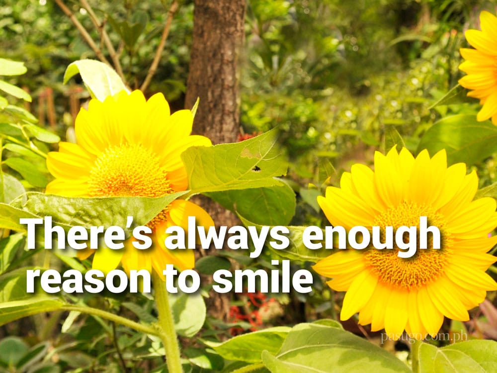 There's always enough reason to smile